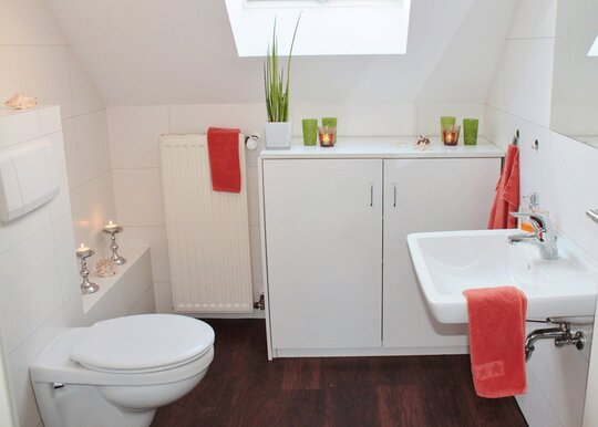 Plumbing tips on Toilets from The Clean Plumber